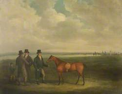 Racehorse with Trainers