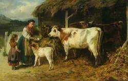 Cattle and Figures