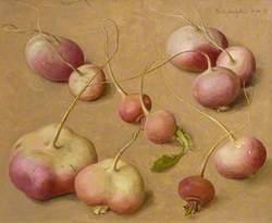 Pink and White Turnips