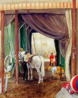 Saddling a Circus Horse