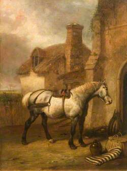 A Grey Horse at a Stable Door