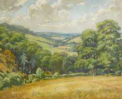 Devon Scene, near Widdecombe Moor