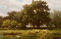 Landscape with Sheep and a Barn