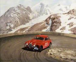 Mk1, Alpine Rally