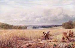 A Warwickshire Scene