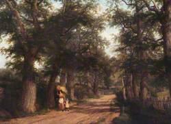 Avenue near Stoneleigh Park