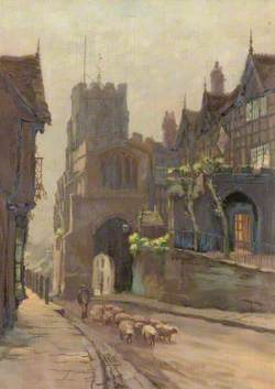 Sheep with Shepherd in Street, Warwick