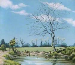 April Sunshine, Willoughby, Warwickshire