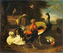 A Cockerel with Other Birds
