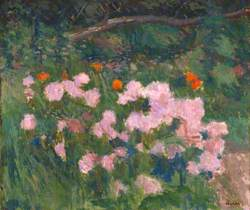Flowers: Chrysanthemum Bush