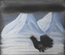 Capercaillie and Cloud