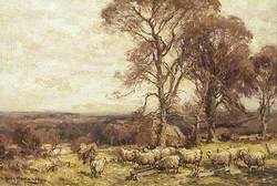 A Flock of Sheep and Trees