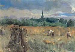 Harvest Field, Stratford-Upon-Avon, Warwickshire