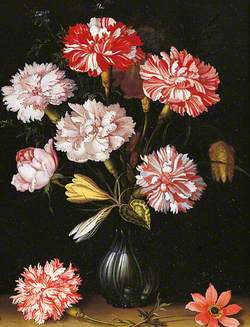 Floral Study: Carnations in a Vase