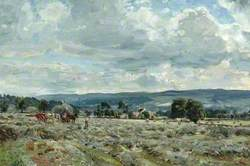 Haytime near Nesfield