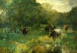 Valley Pasture, Marsh Meadows