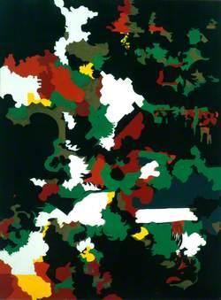 Ystradfellte (Camouflage)