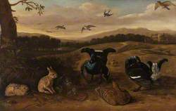 Black Game Rabbits, and Swallows in a Park