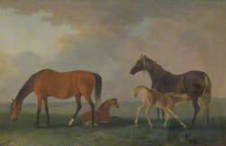 Mares and Foals, Facing Left
