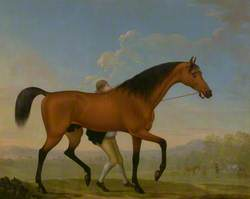 The Duke of Ancaster's Bay Stallion, Blank, Walking towards a Mare