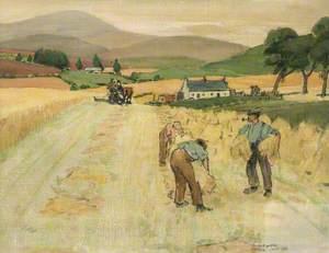 Harvest, Angus