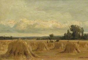 Harvest Field, Rosemount, Blairgowrie, Perthshire