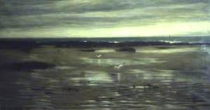 A Lone Shore