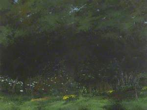 Edge of a Wood, Early Summer