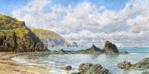 Forest Cove, Cardigan Bay
