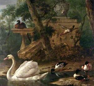 Birds in a Garden