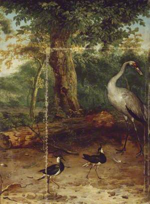Birds in a Wood