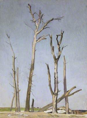 Landscape with dead Trees