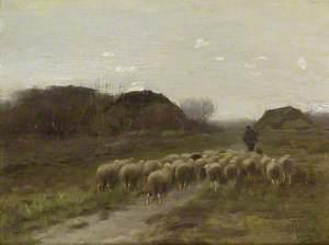 Shepherd and Sheep, Evening