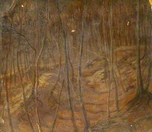 Woods at Denner Hill, Buckinghamshire