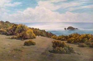 Baggy Point, Devon (Landscape, Sark)