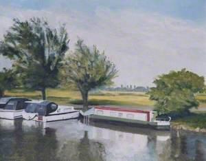 Springtime in Port Meadow, Oxford