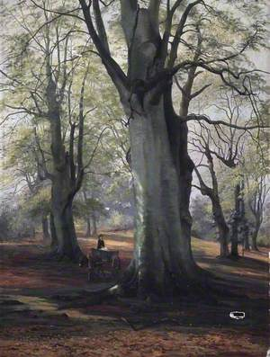 Forest Scenery, Windsor
