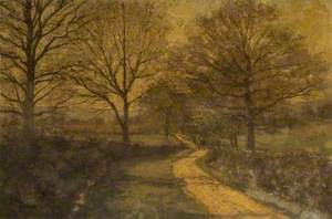 Winding, Tree-Lined Country Lane