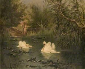 View in Vicarage Garden, Newbury, Berkshire