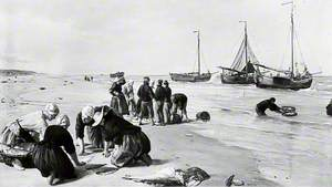 Fish from the Dogger Bank, Scheveningen, Holland