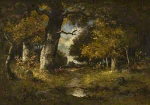 Woodland Scene