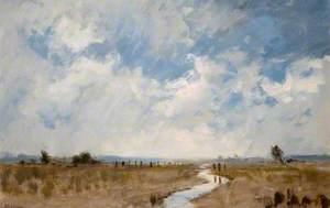 Marshland in Somerset