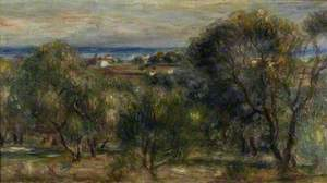 Olive Trees, Cagnes