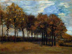 The Alley of Trees in Autumn