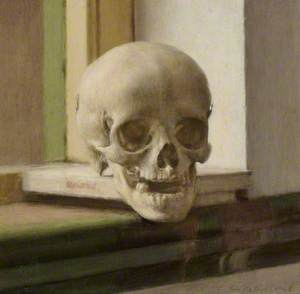 Skull on a Ledge
