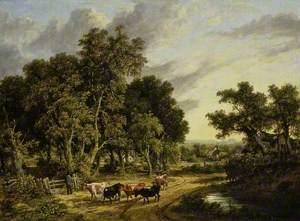 Near Norwich