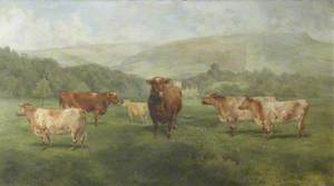 The Bull 'Duke of Underley', with Cows '8th Duchess of Oneida' and 'Duchess of Lancaster'