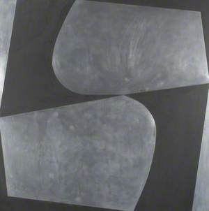 Black and Aluminium