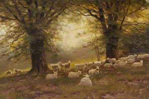 East Heath, Sheep under Trees