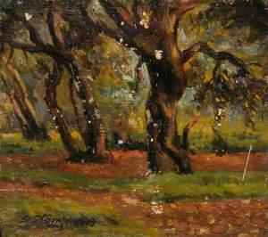 West Heath, October